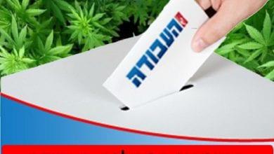 Photo of פריימריז בעבודה 2012: מדריך הצבעה לתומכי לגליזציה (תוצאות הפריימריז)