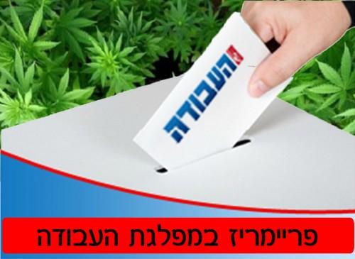 פריימריז בעבודה: פריימריז בעבודה 2012: מדריך הצבעה לתומכי לגליזציה (תוצאות