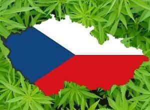 צ'כיה - מריחואנה