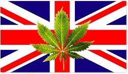 Photo of המומחים לענייני סמים בממשלת אנגליה ממליצים על דה-קרימינאליזציה