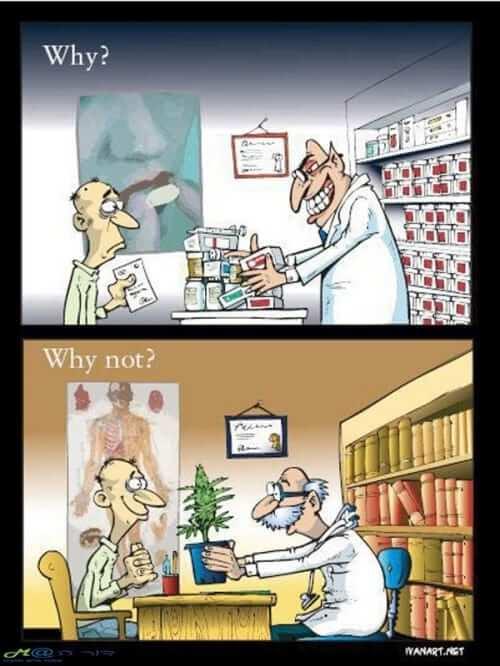 תרופות מרשם הורגות מריחואנה מרפאת
