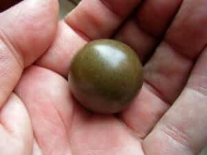 כדור חשיש