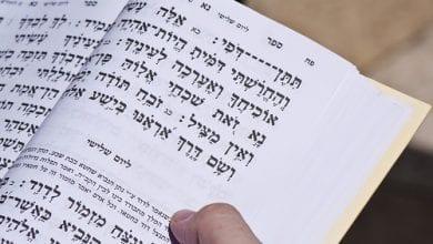 "Photo of קנה בושם – קנאביס בתנ""ך"