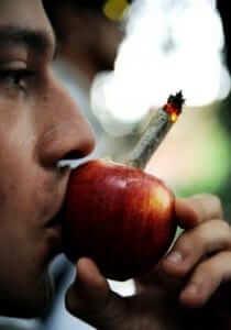 פייפ תפוח עץ