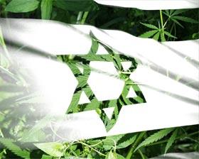 קנאביס ישראלי