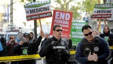 "Photo of המשטרה הפדראלית פושטת על ""אוקסטרדם"" – אוניברסיטת הקנאביס בקליפורניה"
