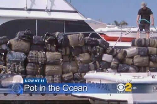 4 טונות של מריחואנה נתפסו במחוז אורנג' בקליפורניה