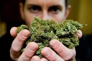 מריחואנה - הסם הנפוץ ביותר בעולם