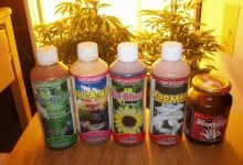 Cheap and effective bio-Bizz fertilizers
