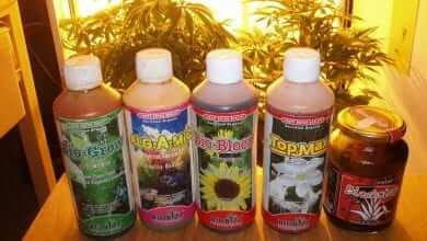 תחליפים זולים ויעילים לדשנים של Bio-Bizz