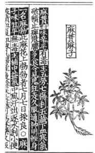 קנאביס בסין העתיקה