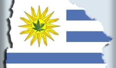 Photo of לגליזציה באורוגוואי – הממשלה תמכור מריחואנה לאזרחים