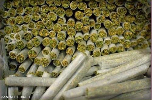 סיגריות קנאביס