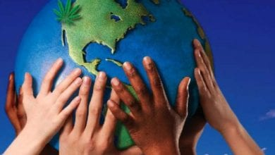 Photo of המהפכה השקטה: לגליזציה מסביב לעולם