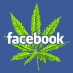 קנאביס פייסבוק