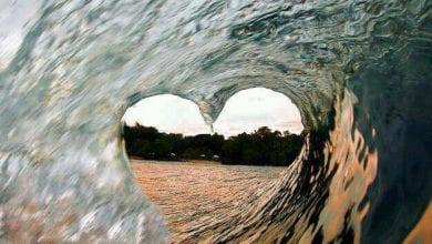 Photo of על מריחואנה, גלישת גלים וסוטול בריא