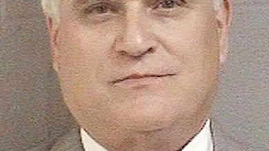 השופט ג'יימס אלאמונג