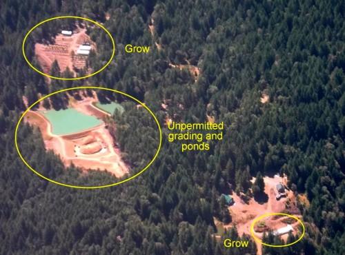 בתי גידול מריחואנה שנתגלו בעזרת לווייני Google Earth