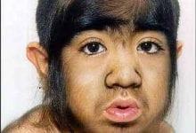 Monkey or man?