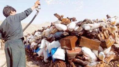 Photo of צפו: שריפת סמים ענקית באפגניסטן