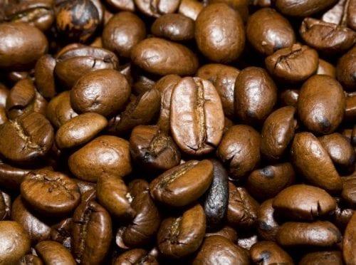 פולי קפה קלויים
