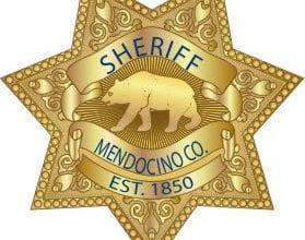 "Photo of ארה""ב: 500 שתילי קנאביס נמצאו אצל קצין במשרד השריף המחוזי"