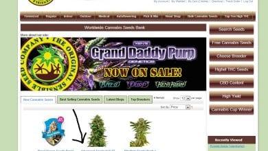 Photo of מדריך לרכישת זרעים באינטרנט – The Sensible Seed Bank