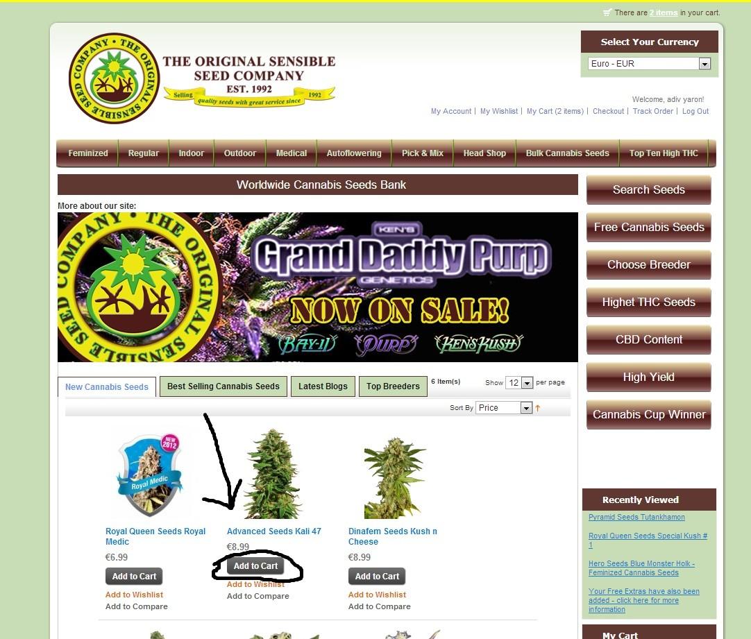 מדריך רכישת זרעים Originale Sensible