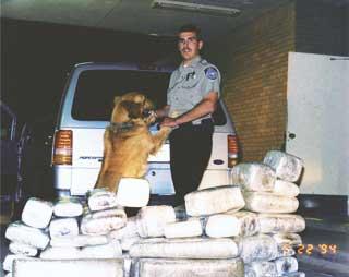 """בארי קופר באחת מתפיסות הסמים בימים ה""""טובים"""" שלו"""