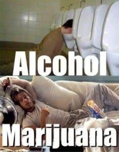 אלכוהול או מריחואנה?