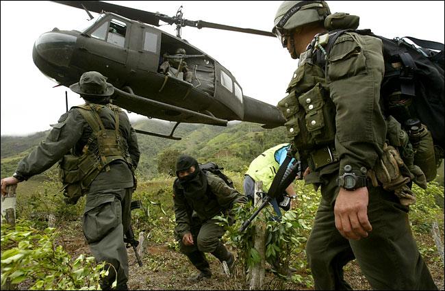 שדות קוקה בקולומביה