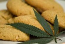 "Photo of ""העוגיות של אבא"" – איך לדבר עם הילדים על מריחואנה"