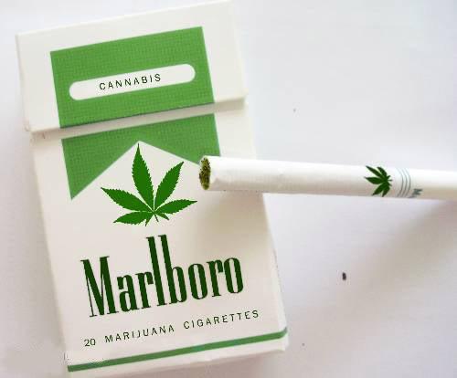 סיגריות קנאביס מרלבורו