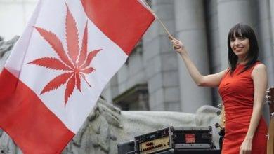 Photo of קנדה: המפלגה הליברלית הציגה תכנית ללגליזציה של מריחואנה