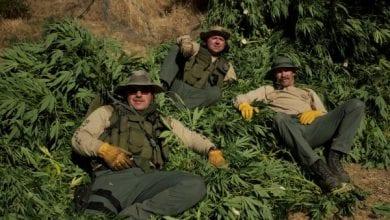 """Photo of סדרת ריאליטי חדשה: """"שוטרי הגראס"""""""