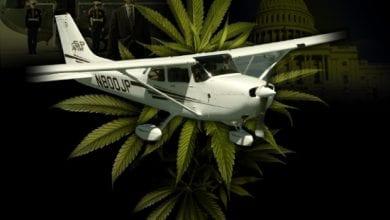 Photo of שאריות עציצי מריחואנה ישמשו להפקת דלק מטוסים