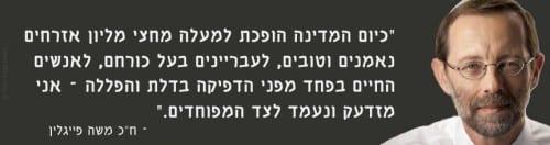 משה פייגלין על לגליזציה