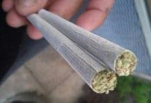 Joint marijuana