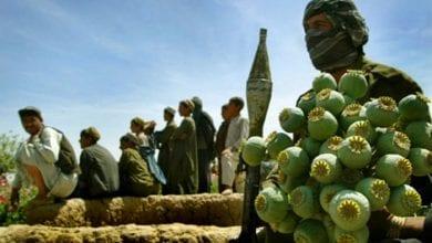 אופיום באפגניסטן