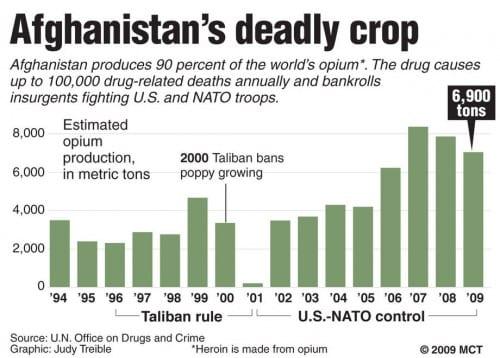 ייצור אופיום באפגינסטן