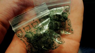 Photo of בריטניה: סוחר סמים נתפס עם 19 שקיות מריחואנה מודבקות לאיבר מינו