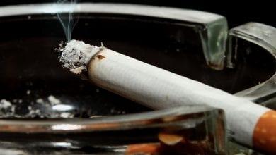 Photo of מחקר חדש: קנאביס לגמילה מסיגריות וניקוטין