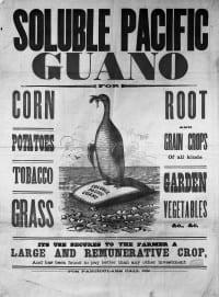פרסומת לגואנו מהמאה ה-19