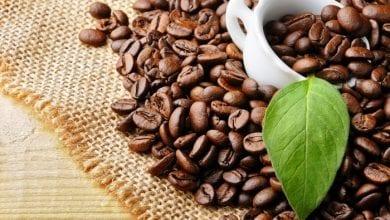 Photo of קפה למבוגרים בלבד: האם בקרוב תיאסר מכירת קפה לקטינים?