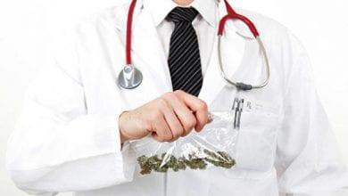 רופאים מריחואנה