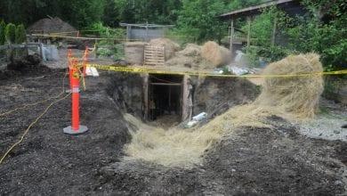 גידול מריחואנה תת-קרקעי