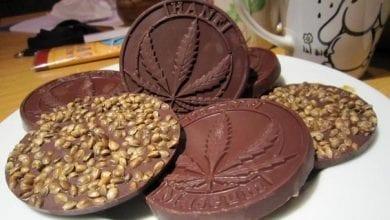 שוקולד קנאביס