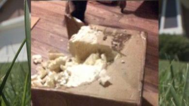"""Photo of הפתעה בדואר: קיבל 5 ק""""ג מריחואנה – בטעות"""