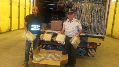 Photo of איטליה: נתפס משלוח של 1.4 טון מריחואנה בדרכו מאלבניה