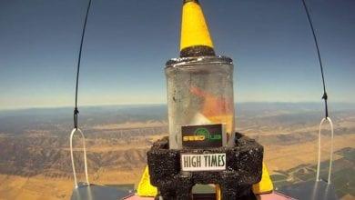 Photo of צפו: עציץ מריחואנה, זרעים וג'וינט נשלחו לראשונה לחלל